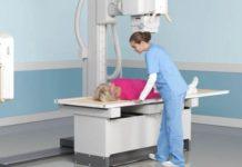 Сколько раз в год можно делать УЗИ, рентген и флюорографию. Что нужно знать об этих исследованиях, как не перебрать дозу облучения